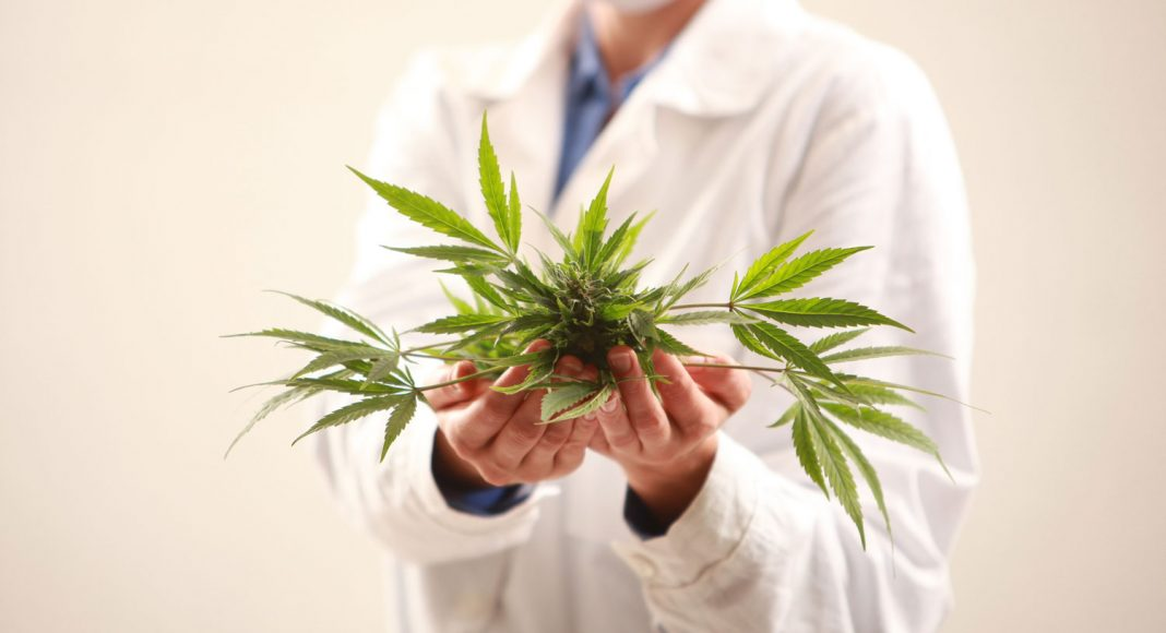 Medicinal Marijuana – Where Would One Look for a Physician?
