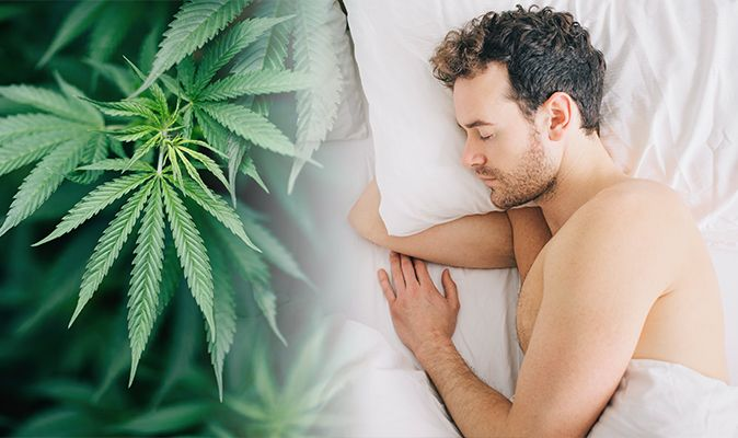 Cannabis Sleeping Problems – Curing Marijuana Withdrawal Caused Sleep Disruption